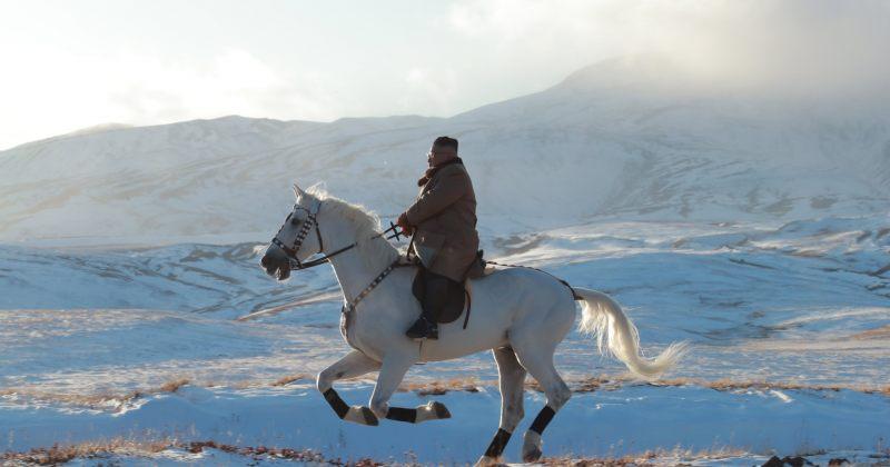 """ადგილობრივი მედიის ცნობით, კიმ ჩენ ინმა """"წმინდა მთა"""" ცხენით დალაშქრა"""