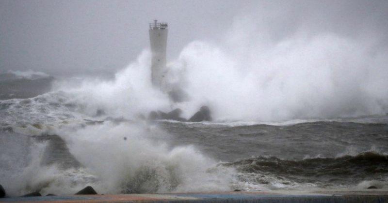 """ტაიფუნ """"ჰაგიბისის"""" გამო, ტოკიოს სანაპიროსთან პანამური სატვირთო გემი ჩაიძირა"""