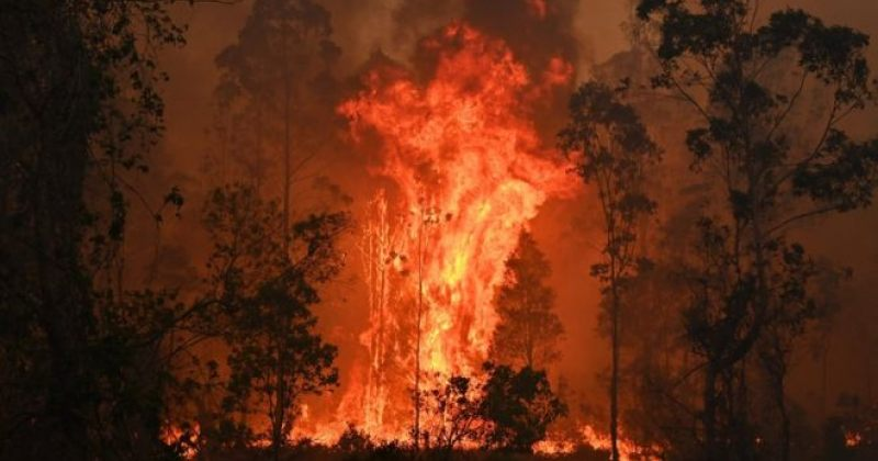 ავსტრალიაში ხანძრის 100-ზე მეტი კერა გაჩნდა - დაიღუპა 3 ადამიანი