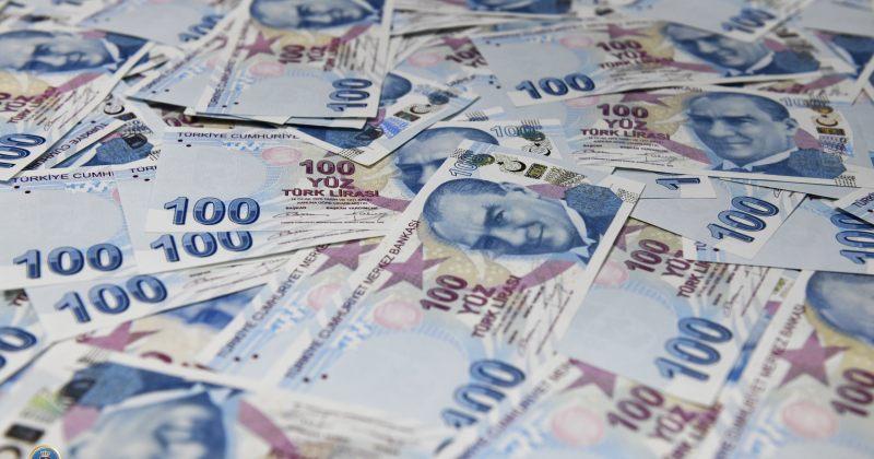 15 000 ყალბი თურქული ლირის გასაღებისთვის ერთი პირი დააკავეს