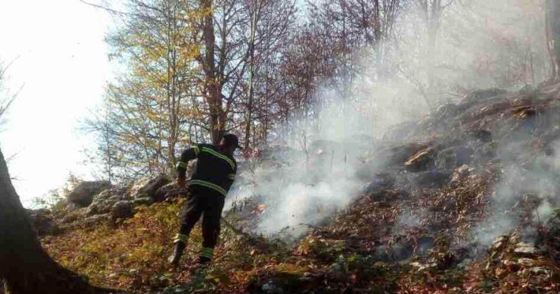 მარტვილში, სოფელ სალხინოს მიმდებარედ, ტყე იწვის