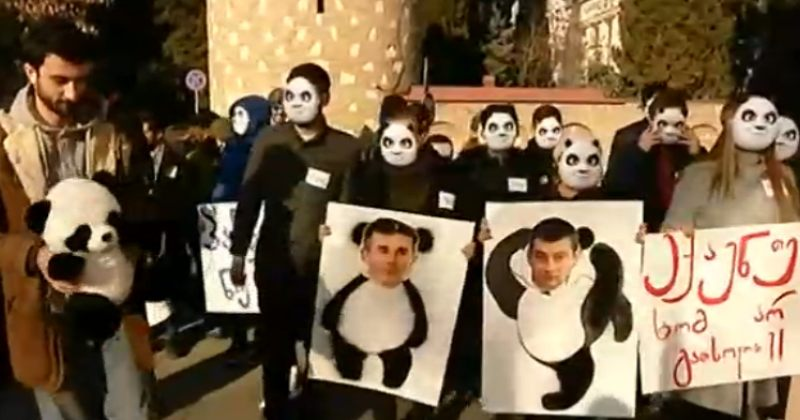 """""""ექაუნთები ხომ არ გათხოვოთ?""""-აქტივისტებმა ქართული ოცნების ოფისთან სათამაშო პანდა მიიტანეს"""