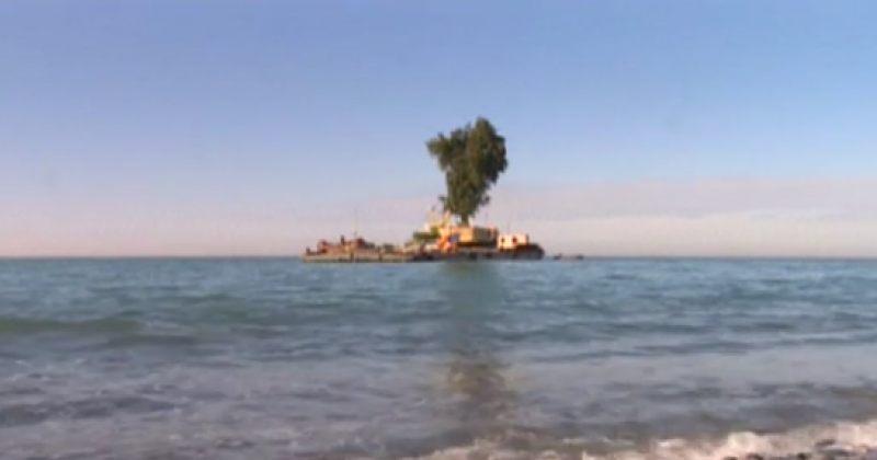 ვოლსკი: არ უწყიან, რაოდენ მნიშვნელოვანია ეკოლოგიისათვის ივანიშვილის აღდგენილი ტყე-პარკები