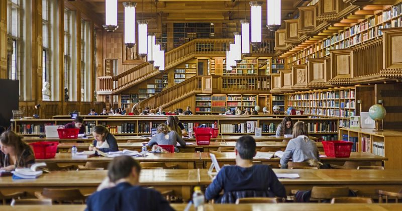 2019 წელს ბიბლიოთეკებს მეტი ამერიკელი სტუმრობდა, ვიდრე კინოთეატრებს - GALLUP-ის კვლევა
