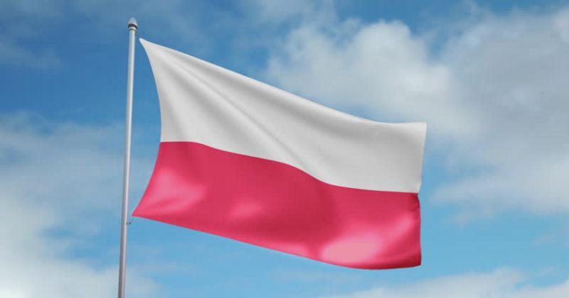 პოლონეთი: რუსეთის მავნებლური კიბერაქტივობები უნდა გამოაშკარავდეს და მკაცრად დაიგმოს