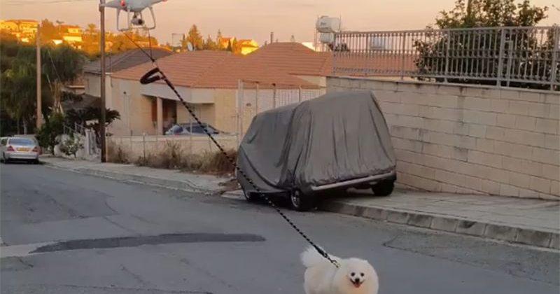 კვიპროსელი მამაკაცი, კორონავირუსის პანდემიის დროს, ძაღლს დრონით ასეირნებს [VIDEO]
