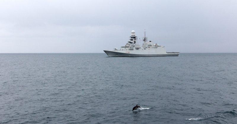 შავ ზღვაში შსს-ს სანაპირო დაცვის და NATO-ს ხომალდების ერთობლივი წვრთნები ჩატარდა