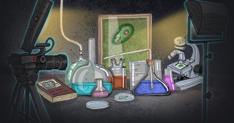 სახიფათო რჩევები კორონავირუსზე და მათი გავლენა რეალურ სამყაროზე