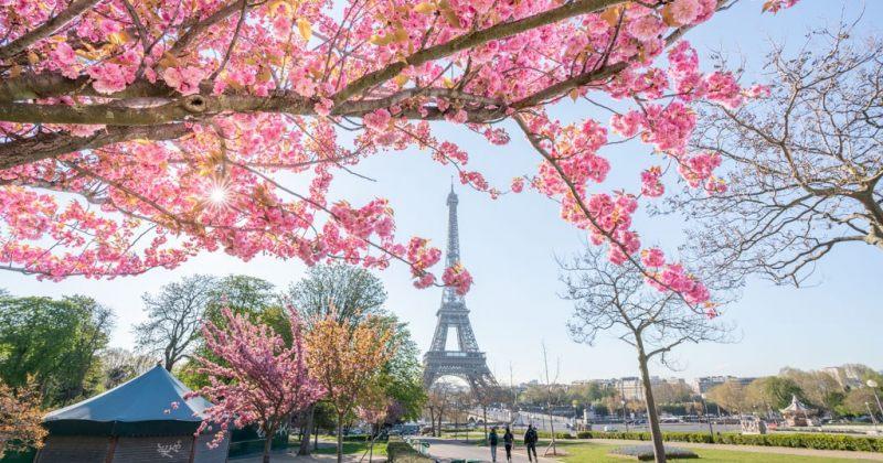 პარიზში ეიფელის კოშკი სტუმრებისთვის 25 ივნისიდან ხელახლა გაიხსნება