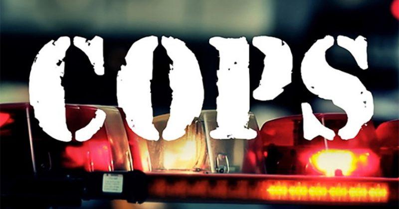 სატელევიზიო შოუ COPS ეთერში აღარ გამოვა