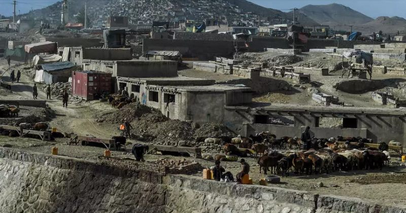 თალიბანმა რელიგიური დღესასწაულის გამო 3-დღიანი ცეცხლის შეწყვეტის შესახებ გამოაცხადა