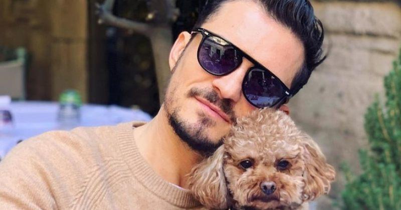 ორლანდო ბლუმმა მკვდარი ძაღლის საპატივცემულოდ ტატუ გაიკეთა