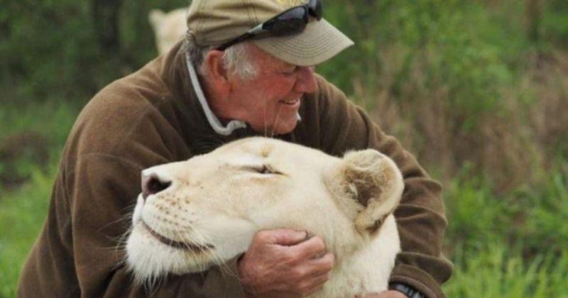 სამხრეთაფრიკელი კონსერვაციონისტი საკუთარმა თეთრმა ლომებმა მოკლეს