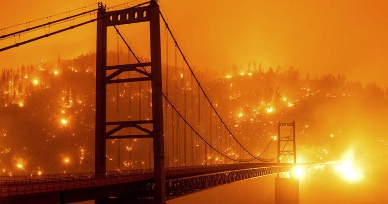აშშ-ს დასავლეთ შტატებში ძლიერ ტყის ხანძრებს ებრძვიან [გალერეა]