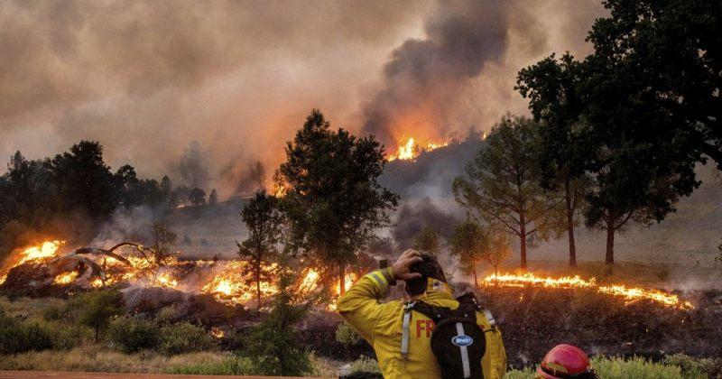 კალიფორნიაში ტყის ხანძრების შედეგად 1.6 მილიონ ჰექტარზე მეტი ფართობის ტერიტორია დაიწვა