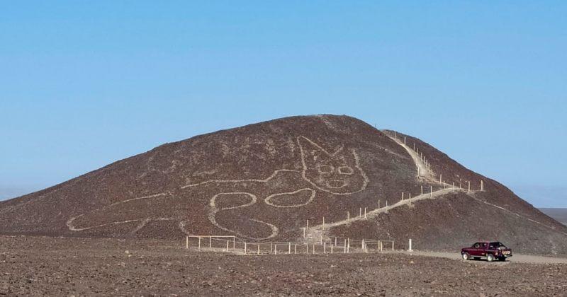 პერუში კატის ფორმის 2000 წლის გიგანტური გამოსახულება აღმოაჩინეს