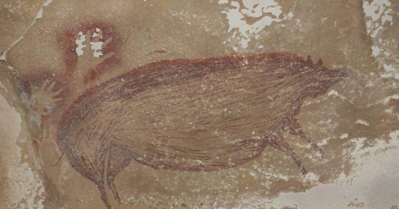 ინდონეზიის გამოქვაბულში 45 500 წლის წინანდელი ნახატი აღმოაჩინეს - ღორის გამოსახულება