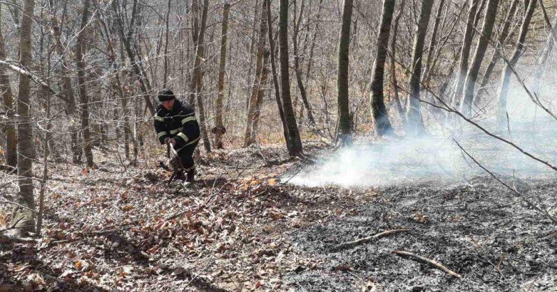 საგანგებო: ქვეყნის მასშტაბით ტყის და მინდვრის ხანძარი 9 ლოკაციაზე ფიქსირდება