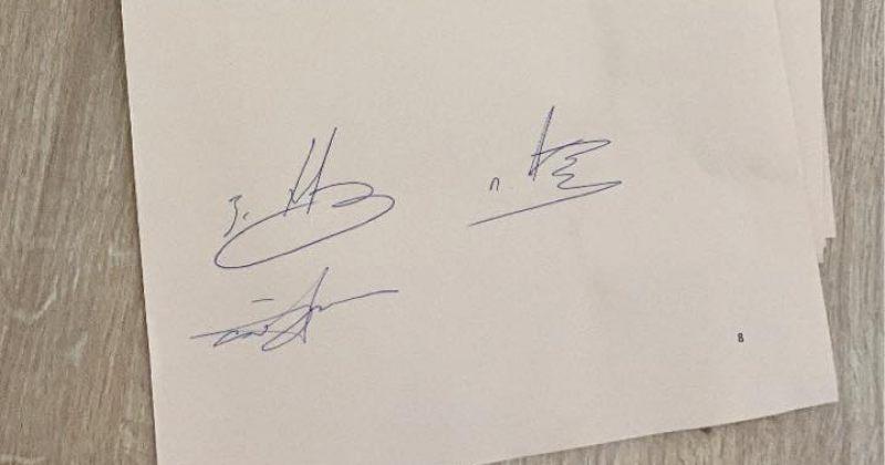 ხვიჩიამ, მეგრელიშვილმა და რაქვიაშვილმა შარლ მიშელის დოკუმენტს ხელი მოაწერეს