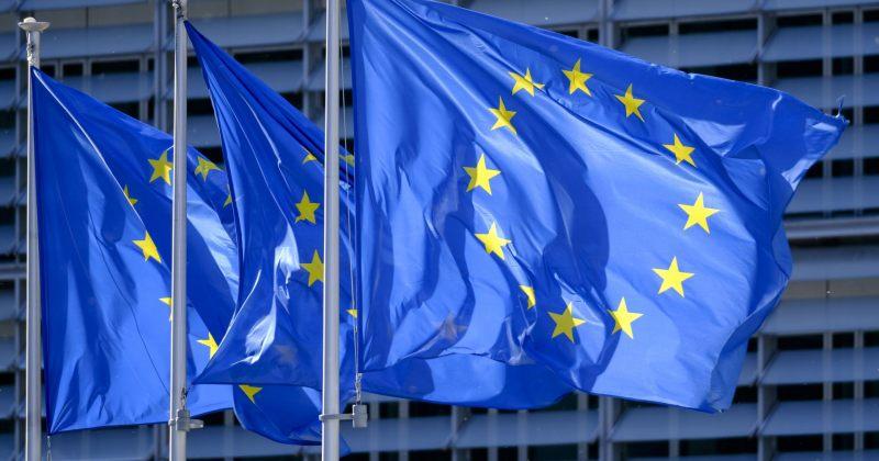 ევროპარლამენტარები: ყველაზე მნიშვნელოვანი მომავალი არჩევნების და ორი პოლიტიკური საქმის გადაწყვეტაა