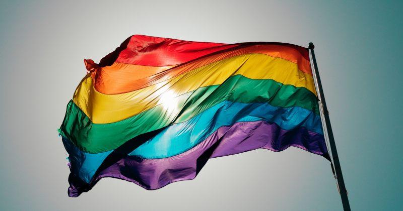 Tbilisi Pride: 15 პარტიასთან თანამშრომლობა დავიწყეთ LGBT უფლებების შესახებ შეთანხმების მისაღწევად