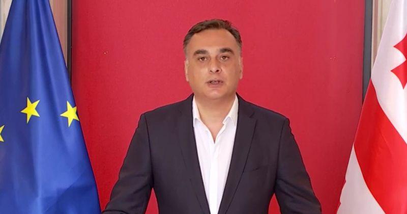 უდუმაშვილი: თუ ქართული ოცნება დაუბრუნდება შეთანხმებას, ენმ იმსჯელებს ხელმოწერაზე