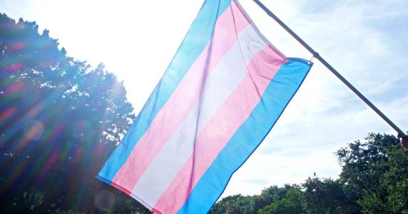 თბილისში ტრანსგენდერ ქალს სიტყვიერი და ფიზიკური შეურაცხყოფა მიაყენეს, დაკავებულია 2 პირი