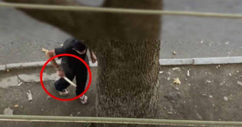 რუსთავში ხანჯლით შეიარაღებული კაცი ქუჩაში გამვლელებს ემუქრებოდა [VIDEO]