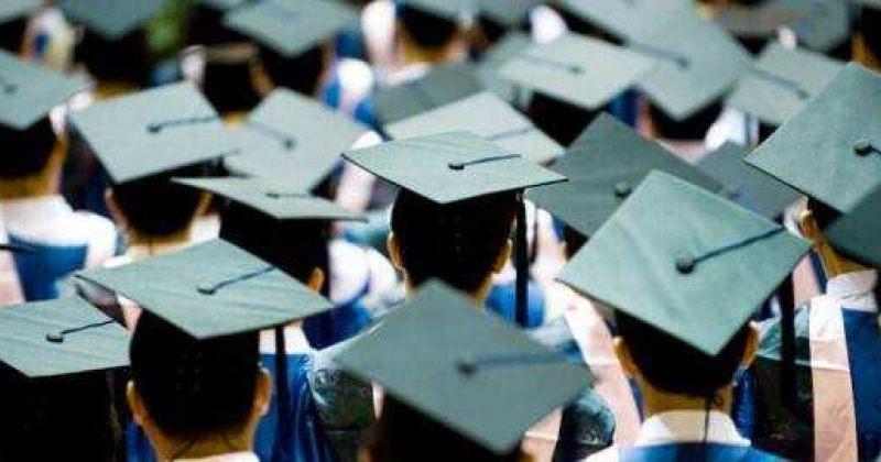 საქართველოში უმაღლესი განათლების მქონე ადამიანების 32-38% უმუშევარია – კვლევა