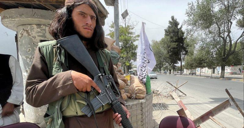 ევროკავშირი: თალიბანმა ომი მოიგო, ასე რომ, მათთან საუბარი მოგვიწევს