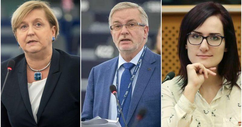 ევროკავშირი: საქართველოს თვითმმართველობის არჩევნებს 7 ევროპარლამენტარი დააკვირდება