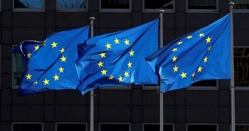 მოსყიდვა, დაშინება, პოლარიზება, დარღვევების გამოძიება – ევროპარლამენტარები არჩევნებზე