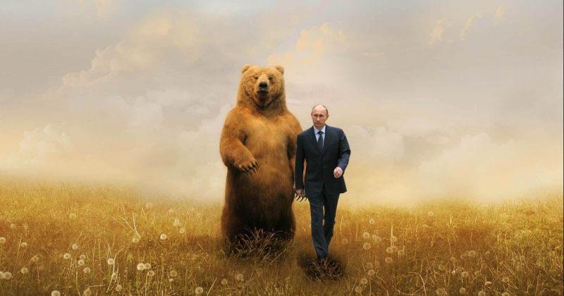 რუსეთის მთავრობამ პუტინისთვის მისალოც ფოტოზე ალასკური დათვი ფოტოშოფით ჩასვა